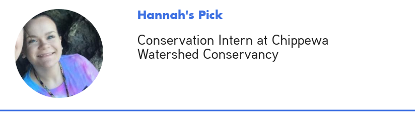 Hannah's pick for Cool Jobs & Internships